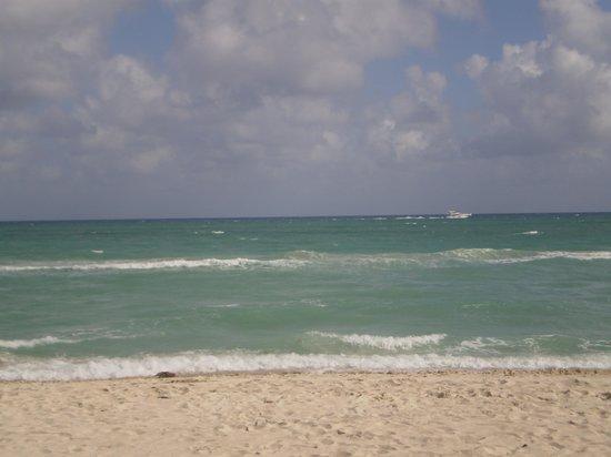 Deauville Beach Resort : playa