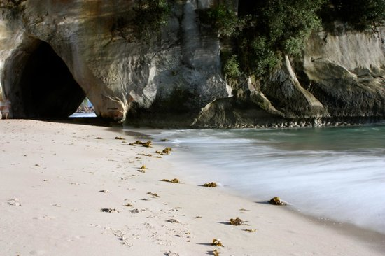 Cathedral Cove Walk: Cathedral Cove
