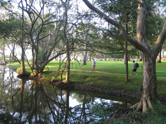 Cinnamon Lodge Habarana: Grounds