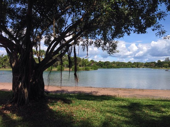 East Point Reserve : View across the lake from a shady spot on the grass.