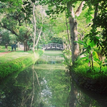 Vivanta by Taj - Kumarakom: man-made canals