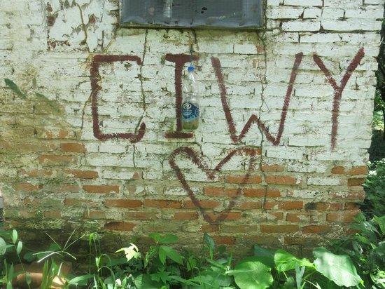 Comunidad Inti Wara Yassi: CIWY