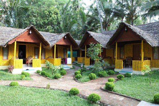 Savithri Inn : Garden