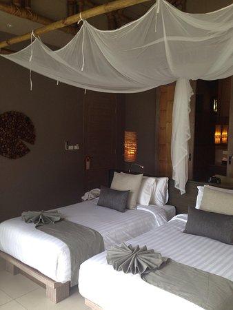 Twin Lotus Resort & Spa: villa