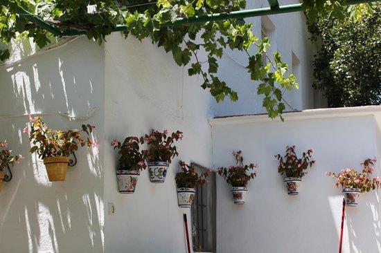 Las Millanas: wall