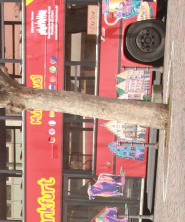 Hotel Excelsior: Рядом все остановки и место посадки в Экскурсионный автобус.