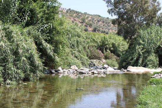 Las Millanas: down to the river 2 (rio grande)