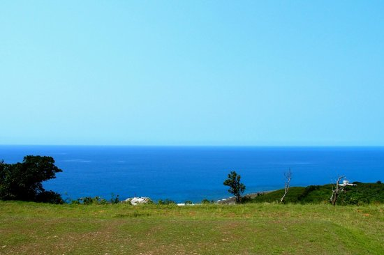 Ocean Paradise Resort: View from room