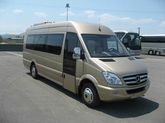 Kelenis Tours: mini bus