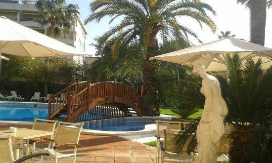 Monica Hotel: Piscina