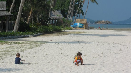 Shiva Samui : Unspoiled stretch of soft white sandy beach