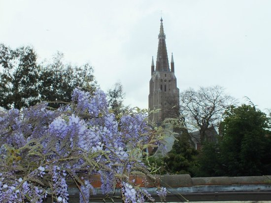 B Guest Bed & Breakfast: Vue sur Notre Dame