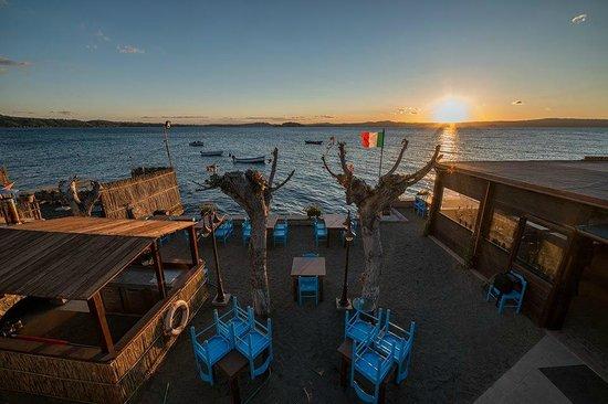 Risultati immagini per pescaturismo montefiascone