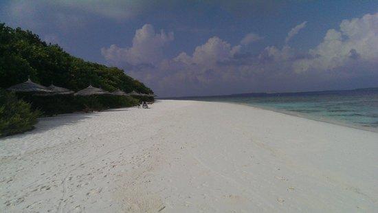 Reethi Beach Resort: plage