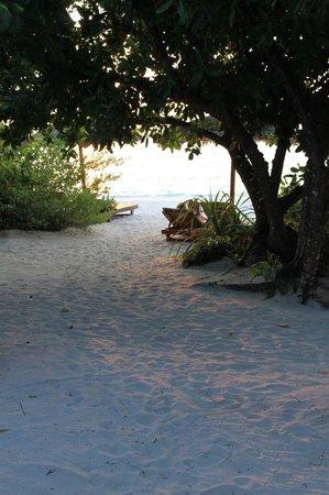 Reethi Beach Resort: vu de la chambre