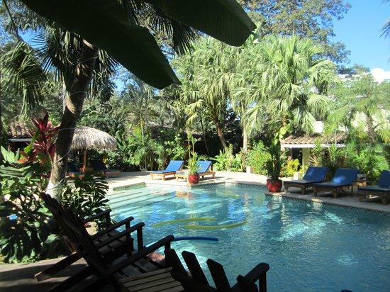 Hotel Pasatiempo: La piscine de l'hôtel, et derrière le bar