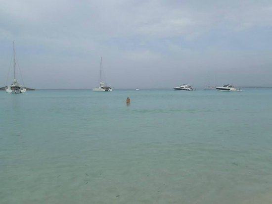Playa de Ses Illetes: clear water, white sand!