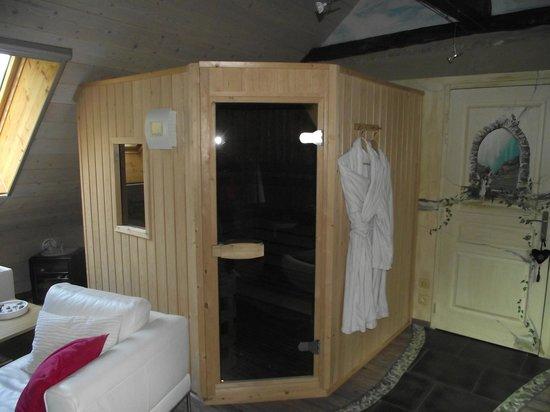 Chambres d'hotes et Gite des Fees : sauna