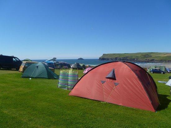 Tristram Campsite: Budget Area in Pentire Field
