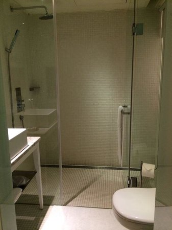 Ambience Hotel : Clean spacious bathroom and big shower space