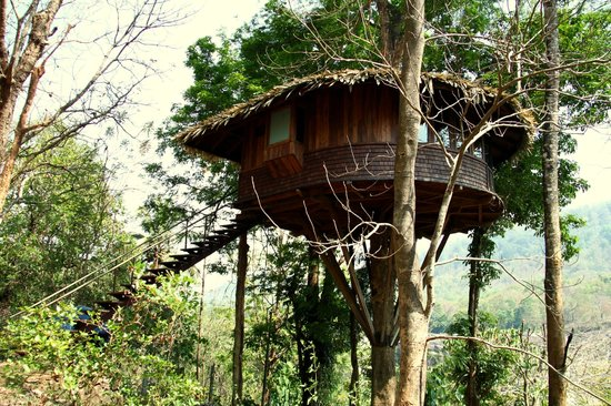 Athirapally, Inde : Tree house