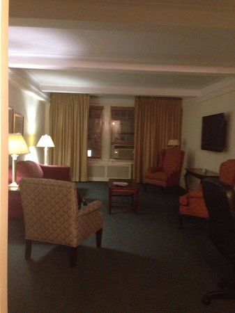 Salisbury Hotel: Living room