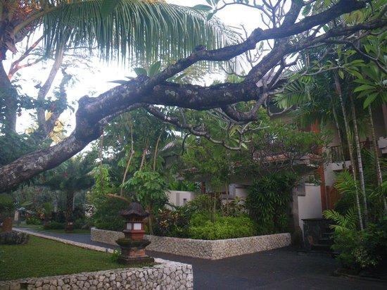 Padma Resort Legian: お部屋はまるで森の中にいるよう
