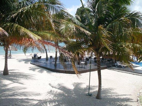 PavoReal Beach Resort Tulum: Bar de plage vue de la chambre