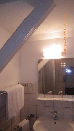 Hotel Harzer Hof: バスルーム