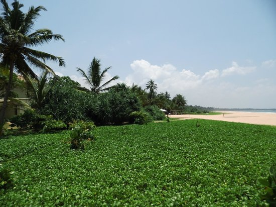 Heritance Ahungalla: Hotelstrand....paradiesisch