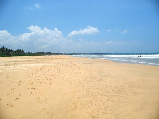 Heritance Ahungalla: Endlos...Strand vor dem Hotel