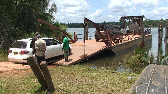 Jodensavanne: Ferry