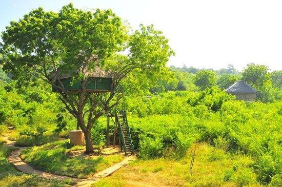 Beddegama Ecopark