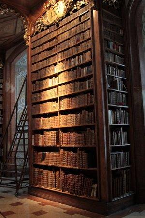 Nationalbibliothek: Magnífica estantería...