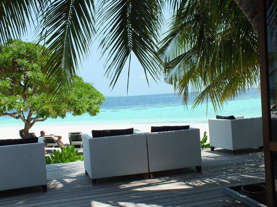 Vilamendhoo Island Resort & Spa : bar