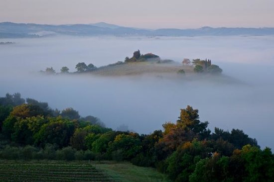 Castello Banfi - Il Borgo: Sunrise and early morning fog ... Photo taken from the swimming pool