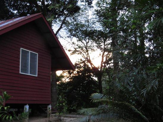 Park Lodge Taman Negara: Cabaña al rio