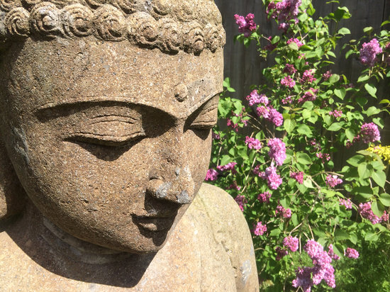 Manoir de La Rogerais & SPA: Jardin paysagé
