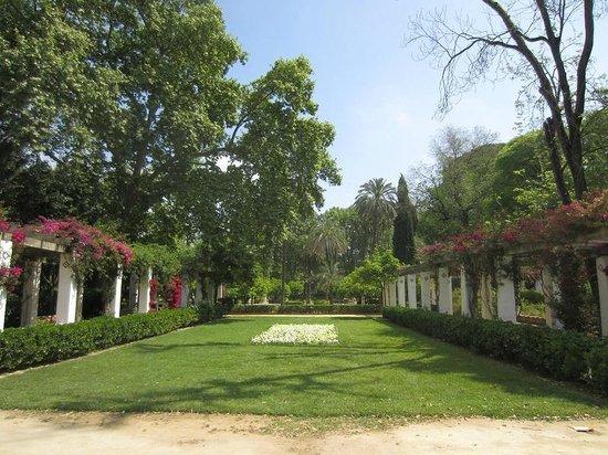 Parc de María Luisa : détail du parc