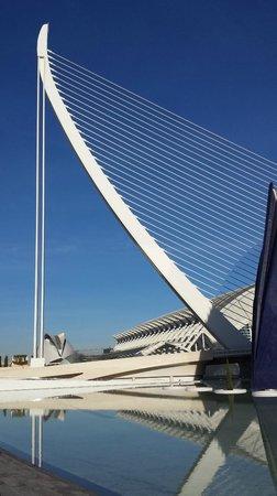Ciudad de las Artes y las Ciencias: Un'arpa un pò speciale...fatta a ponte!