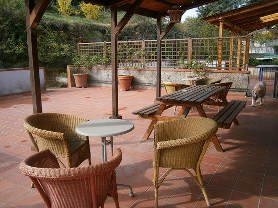 Affittacamere Sansina: terrazzo solarium