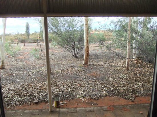 Outback Pioneer Hotel & Lodge, Ayers Rock Resort : The view from our back door.