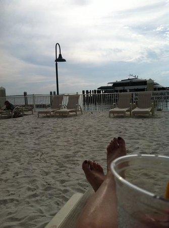 Sanibel Harbour Marriott Resort & Spa: Watching the dolphins frolic!