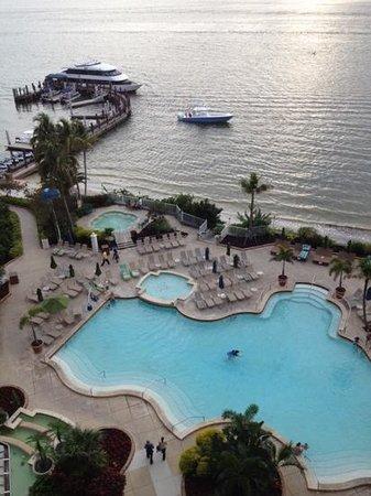 Sanibel Harbour Marriott Resort & Spa: view from my room