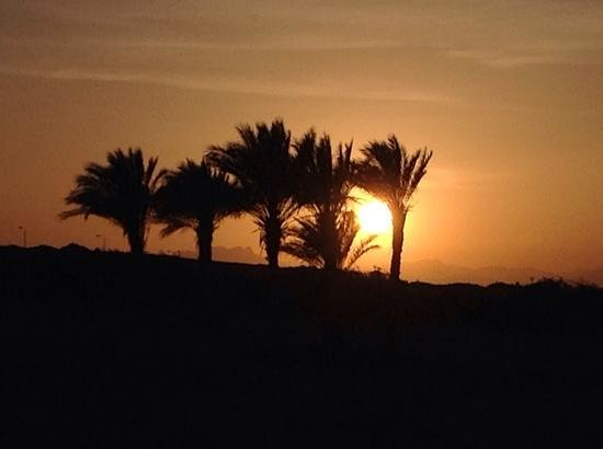 The Oberoi Sahl Hasheesh: Sunset taken from our suite.