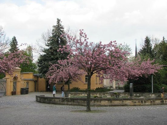 Weissensee Jewish Cemetery: By the entrance