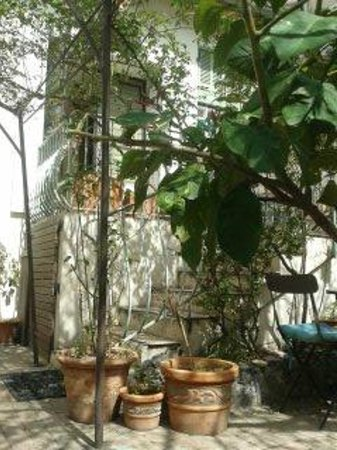 Mediterraneo Le: terrasse
