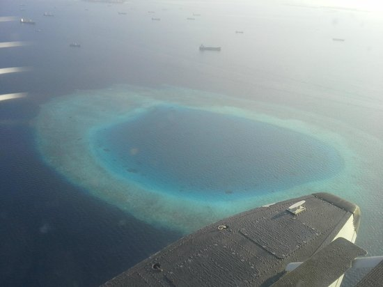 Coral Reef View Inn : Seaplane view