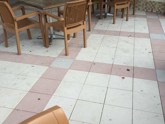 Pineta Park: Chewing gum & dirt on floor