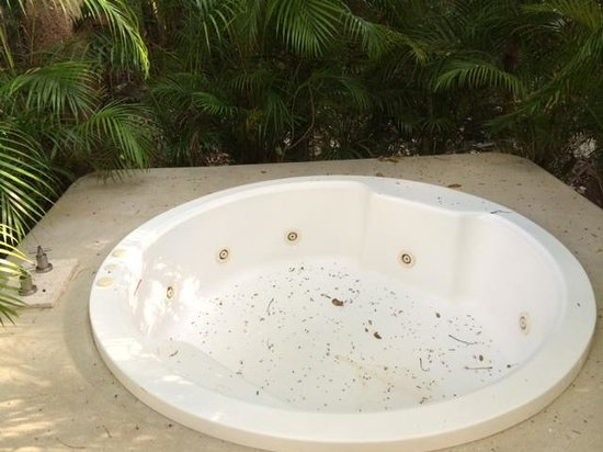 Puerto Yucalpeten, Mexique : A bug bath
